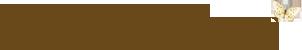 Websterspage_logo