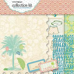 Palm_Beach_Paper_4f217e2dac9d0
