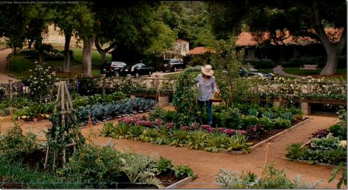 Its-complicated-garden