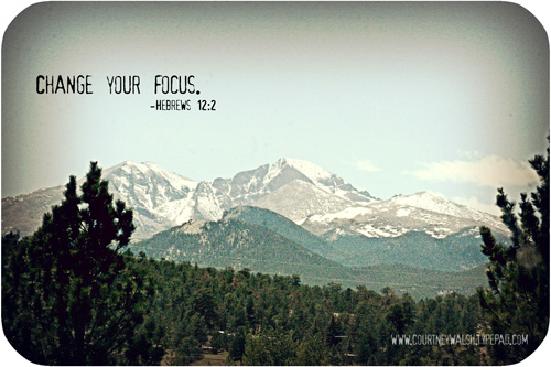Focusweb