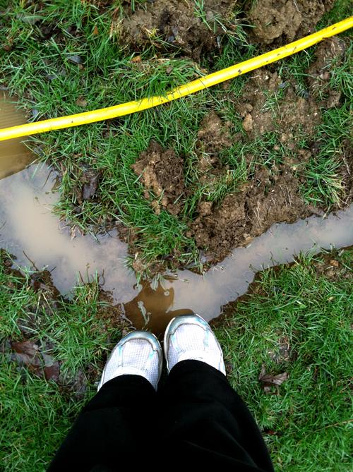Flood14_web