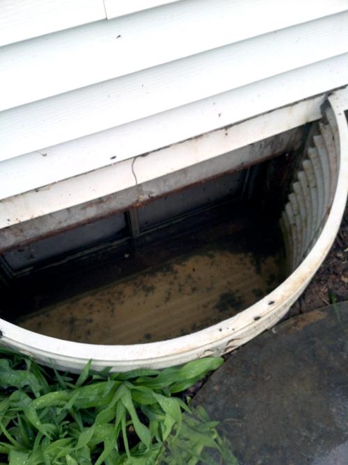 Flood12_web