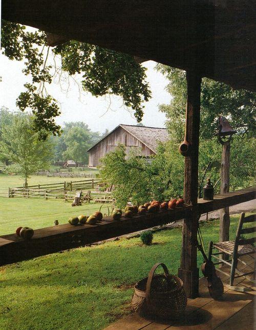 Farm 8