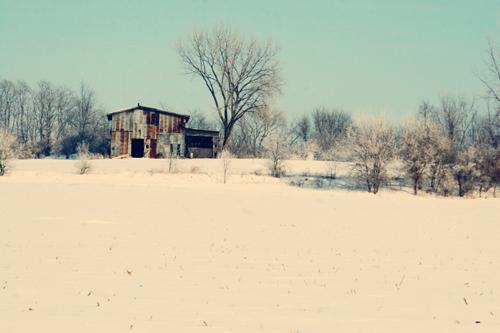 Snowy-shed_web
