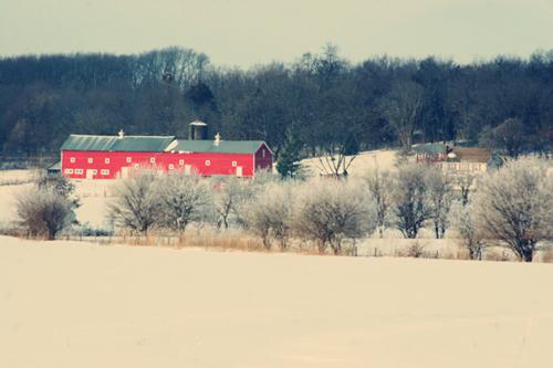 Snowy-barn_web